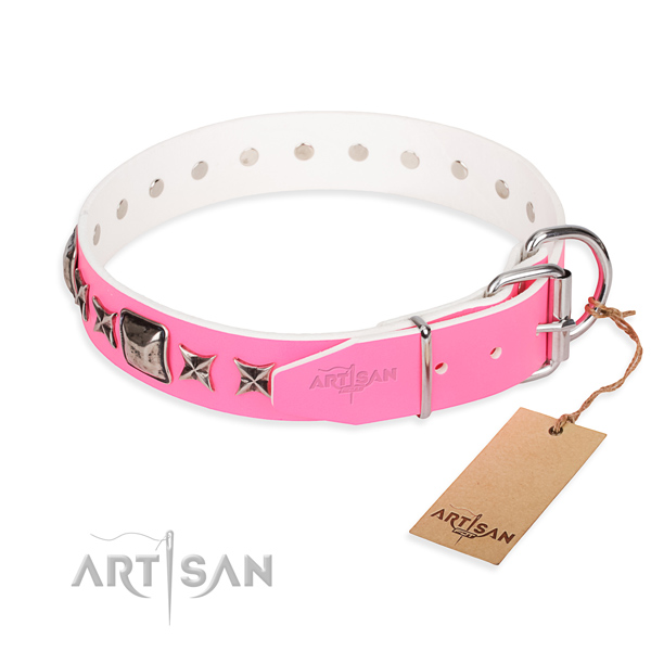 Tear-proof leather collar for your favourite four-legged friend