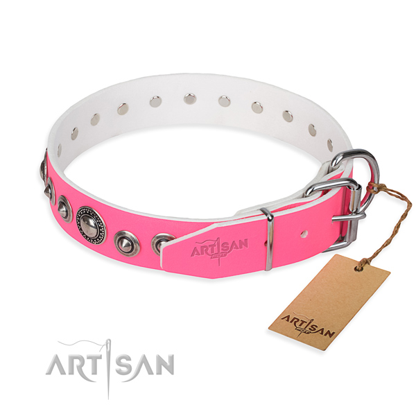 Stylish leather collar for your stunning canine