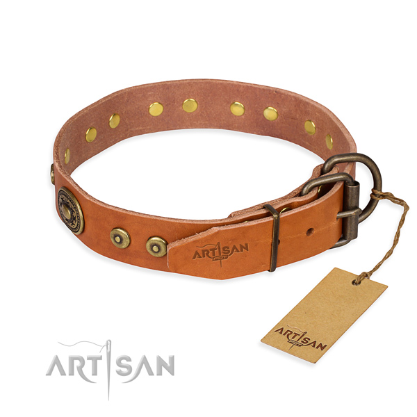 Versatile leather collar for your elegant canine
