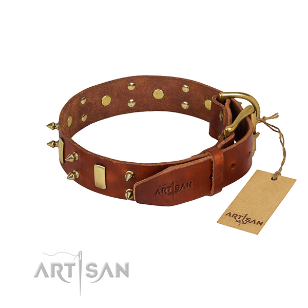 Dependable leather dog collar with durable hardware