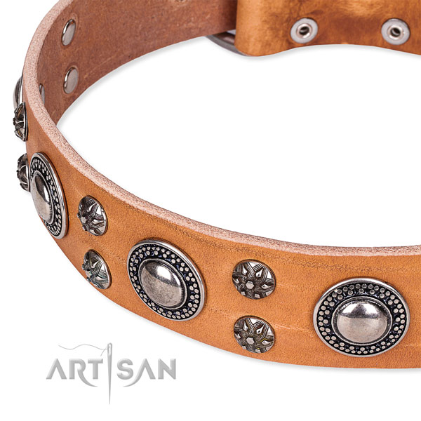 Easy to use leather dog collar with extra sturdy non-rusting fittings