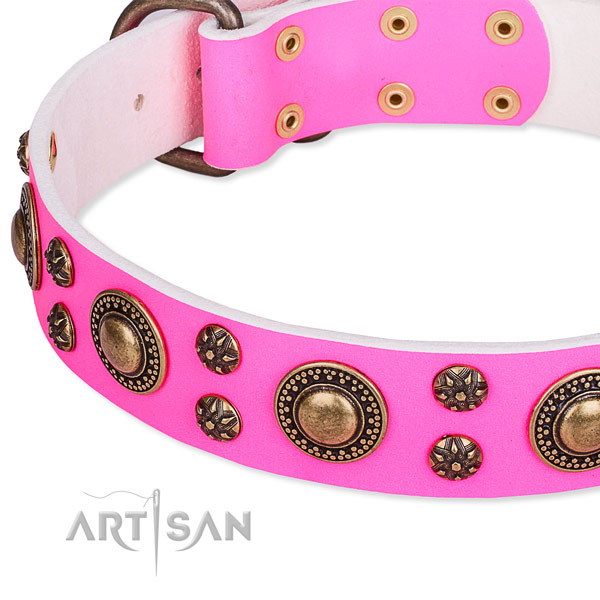 Quick to fasten leather dog collar with resistant brass plated fittings