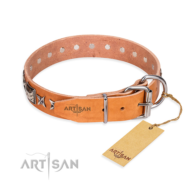 Versatile leather collar for your favourite pet
