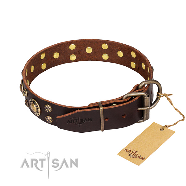 Functional leather collar for your stunning four-legged friend