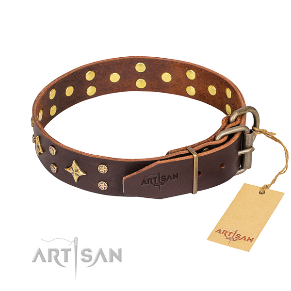 Practical leather collar for your stunning dog