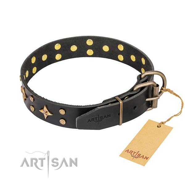 Sturdy leather dog collar with durable fittings