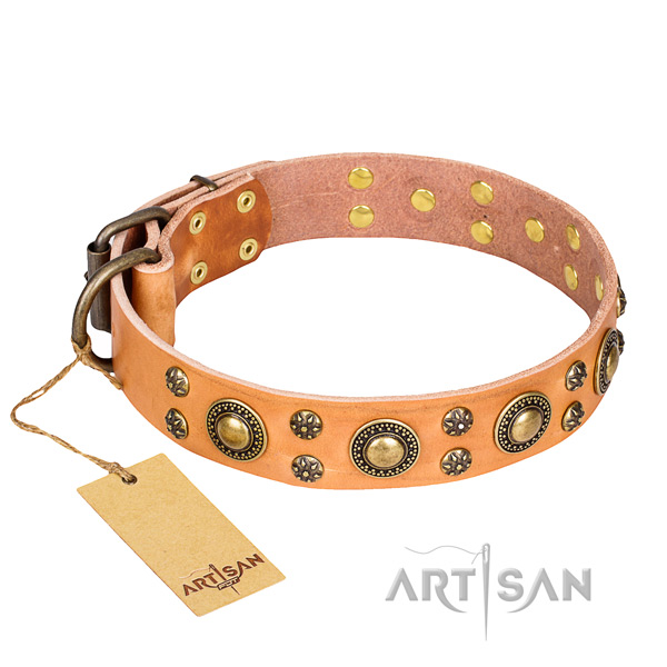 Indestructible leather dog collar with strong fittings