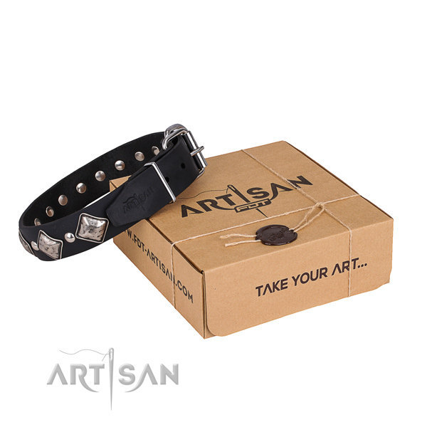 Daily leather dog collar with unique design studs