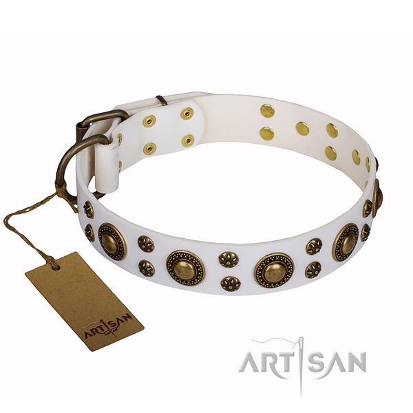 Long-lasting leather dog collar with corrosion-resistant fittings