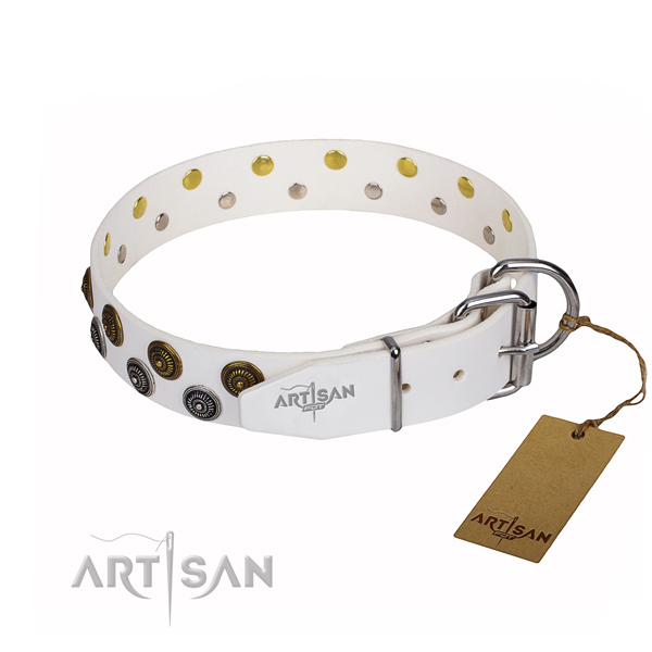 Reliable leather dog collar with riveted hardware
