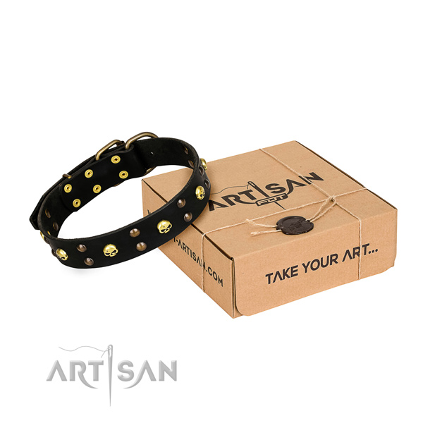 Casual leather dog collar with fancy embellishments