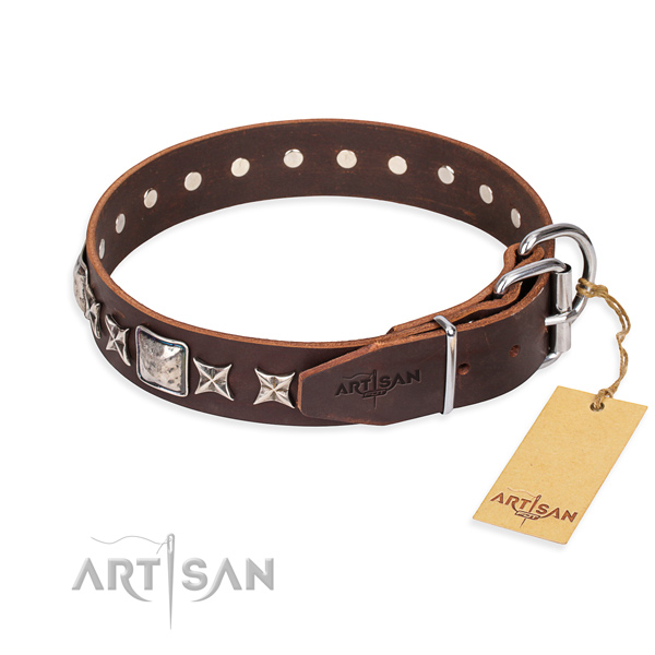 Fashionable leather collar for your beloved four-legged friend