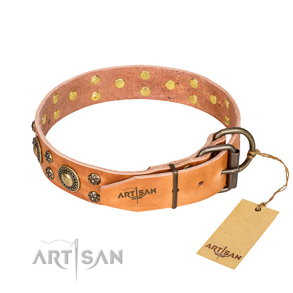 Wear-proof leather collar for your darling canine