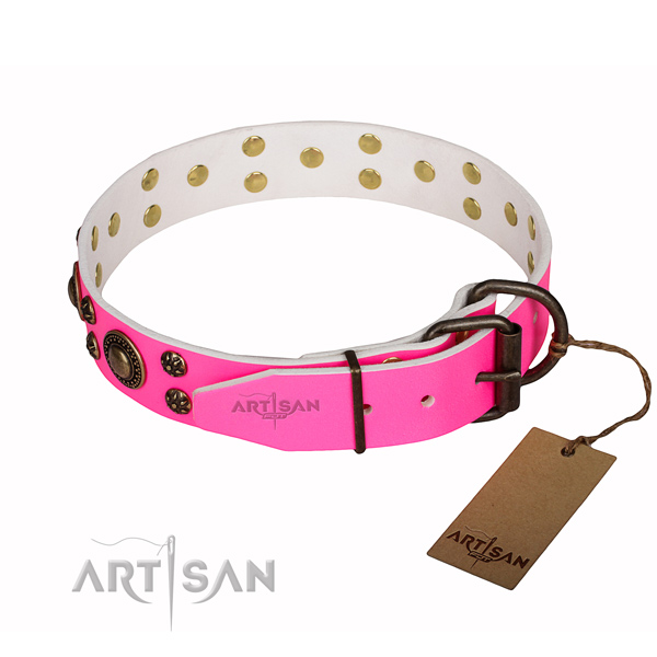 Durable leather dog collar with reliable fittings