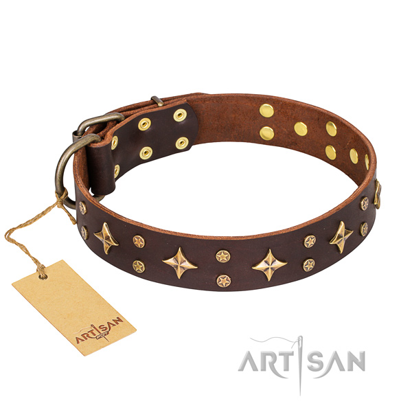 Sturdy leather dog collar with rust-proof hardware