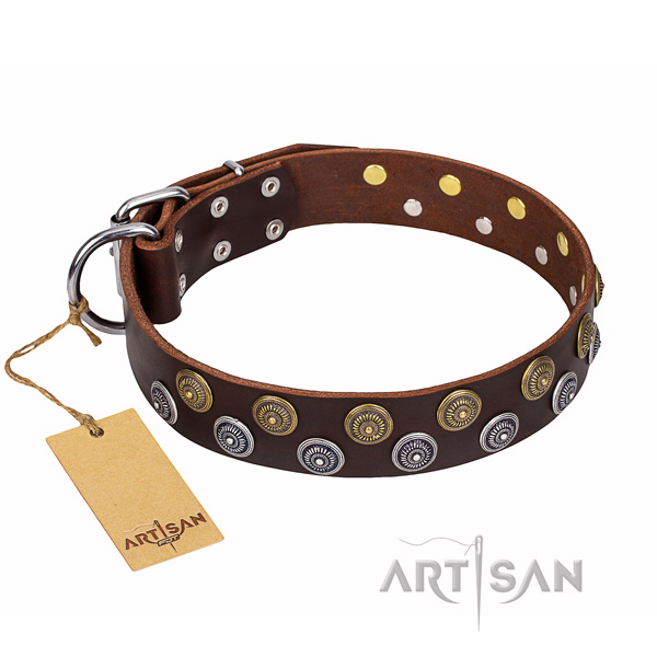 Sturdy leather dog collar with rust-proof elements