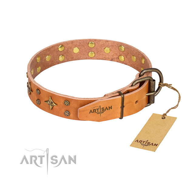 Wear-proof leather collar for your gorgeous pet