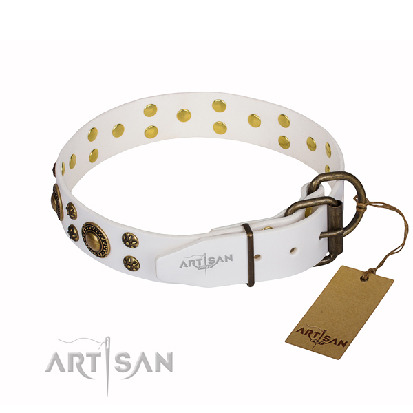 Awesome leather collar for your stunning four-legged friend