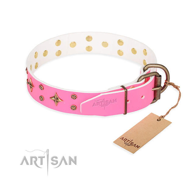 Practical leather collar for your beloved four-legged friend