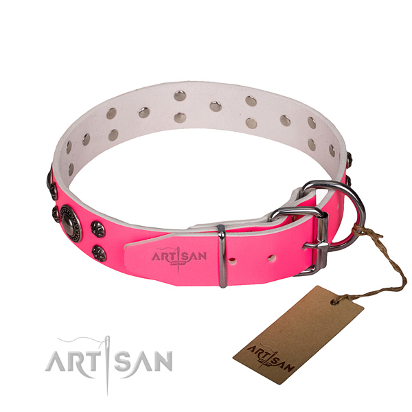 Durable leather collar for your handsome pet