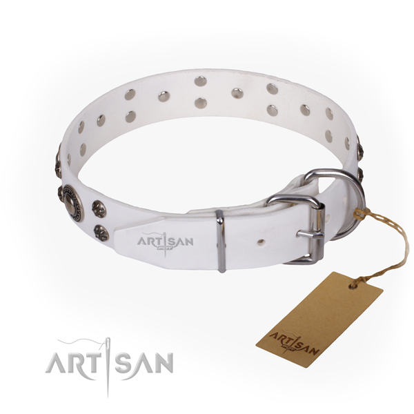 Daily leather collar for your darling four-legged friend