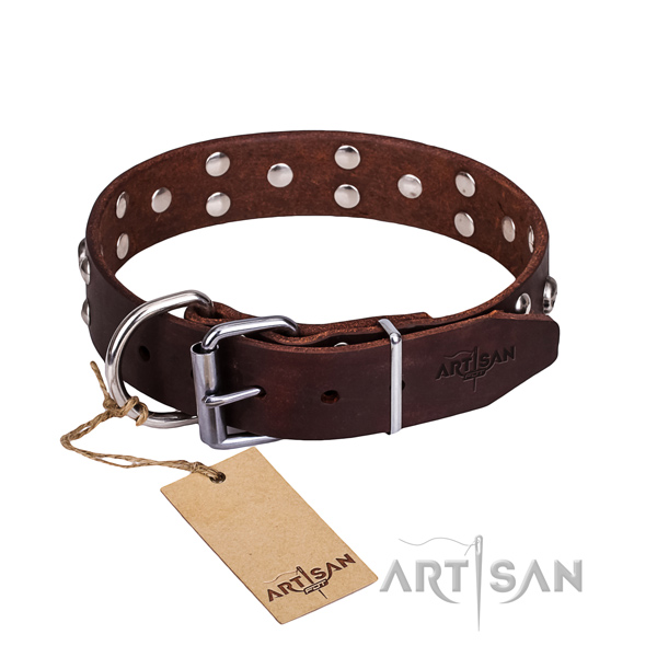 Leather dog collar with thoroughly polished edges for convenient everyday outing