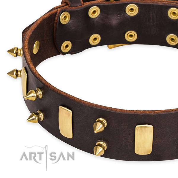 Easy to use leather dog collar with resistant to tear and wear brass plated buckle