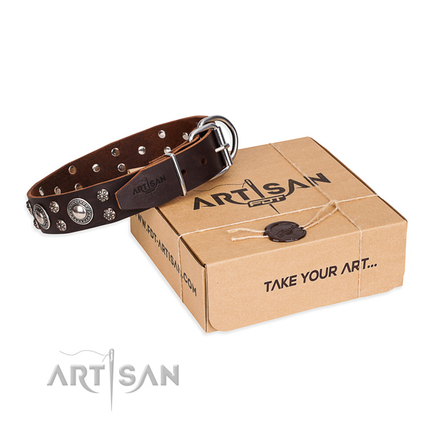 Casual style leather dog collar with exceptional studs