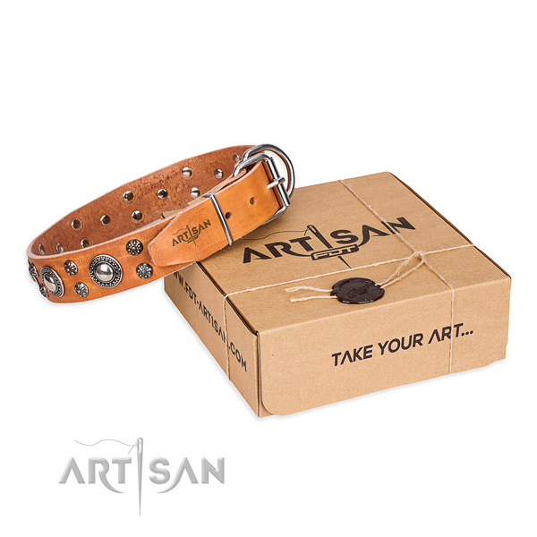 Casual leather dog collar with sensational decorations