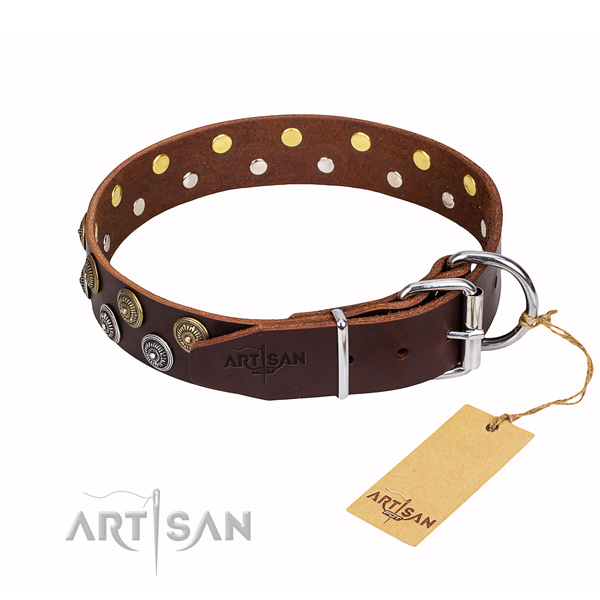 Practical leather collar for your handsome pet