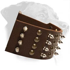 Rottweiler Leather Dog Collar with spikes and studs