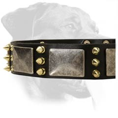 Superb Rottweiler Leather Collar