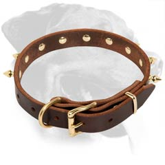 Well-made Rottweiler Leather Dog Collar