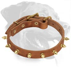 Wonderful Rottweiler Leather Dog Collar