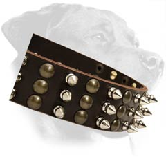 Great Rottweiler Leather Dog Collar