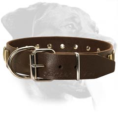 Rottweiler Leather Dog Collar with strong hardware