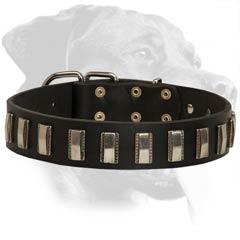 dog collars studded