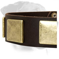 Rottweiler Leather Dog Collar with riveted hardware