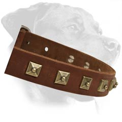 Soft Leather Dog Collar for better comfort
