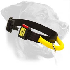 Perfect Rottweiler Nylon Dog Collar