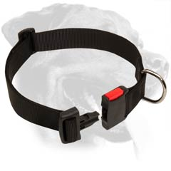 Rottweiler Nylon Dog Collar with quick release buckle