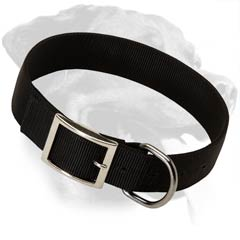 Elegant Rottweiler Nylon Dog Collar