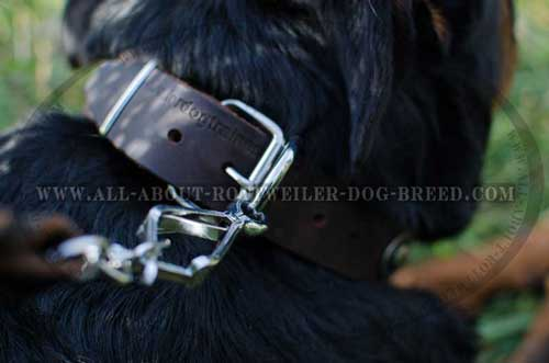 Rottweiler Top Quality Leather Collar with Reliable Buckle