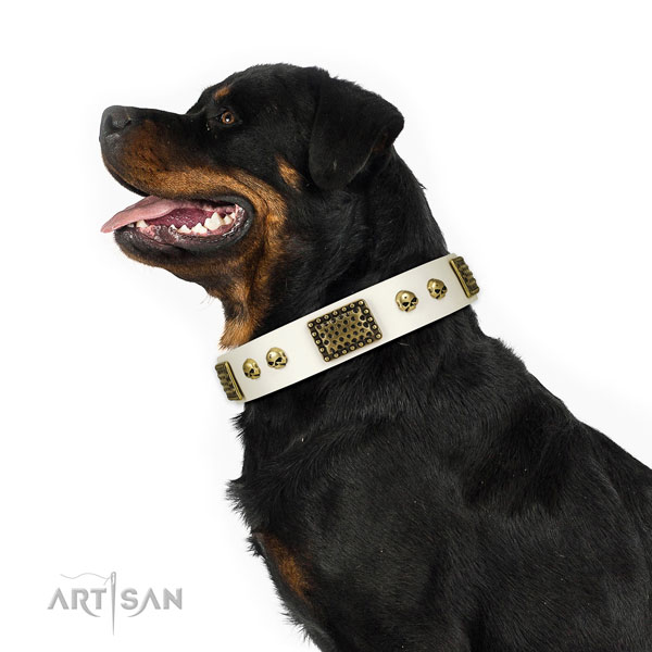 Durable D-ring on natural leather dog collar for fancy walking