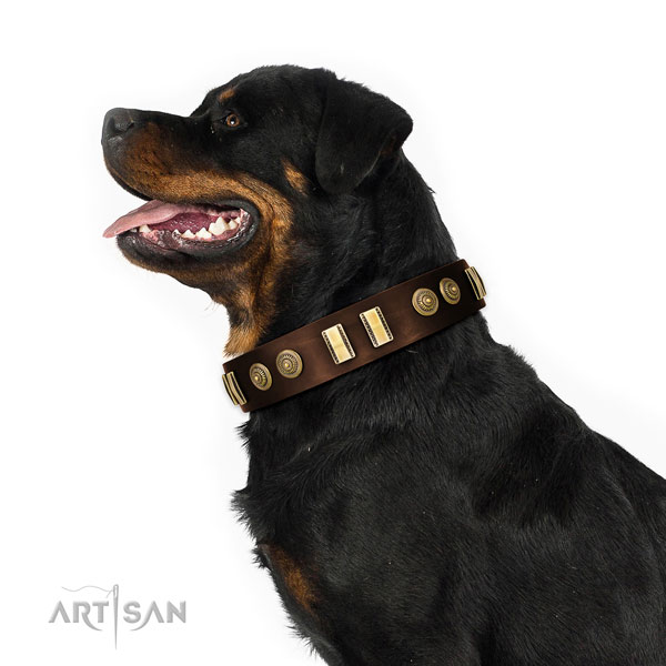 Corrosion resistant D-ring on genuine leather dog collar for fancy walking