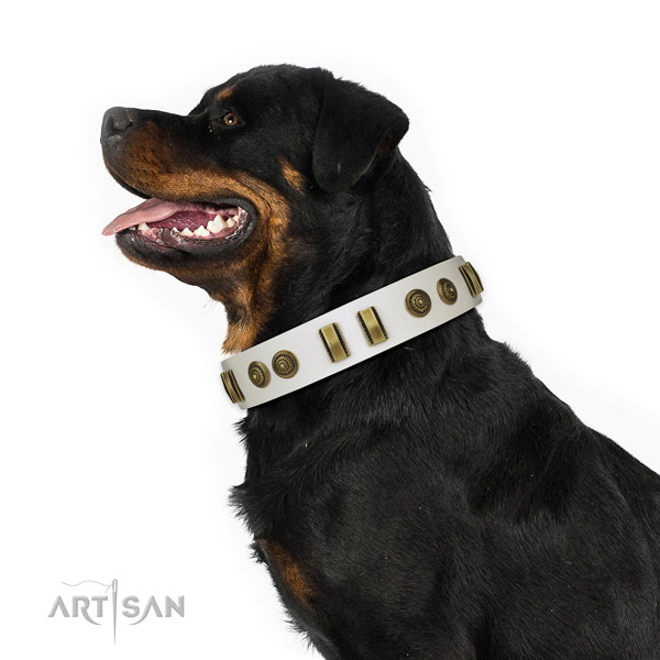 Rust-proof D-ring on natural leather dog collar for handy use