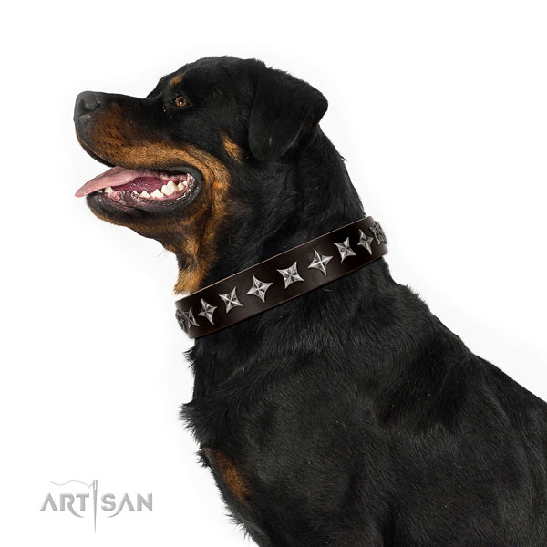 Easy wearing studded dog collar of fine quality leather