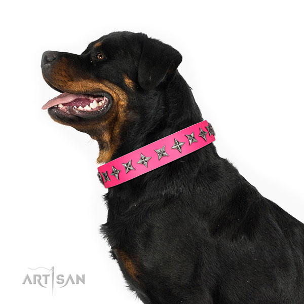 Strong full grain genuine leather dog collar with trendy adornments