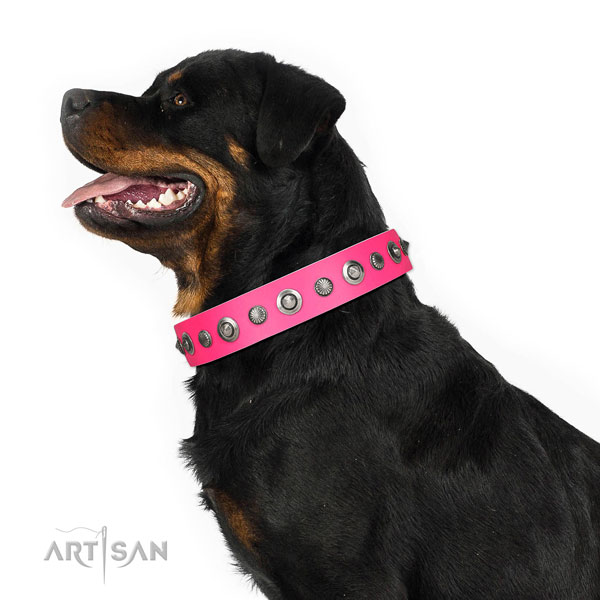 Genuine leather collar with corrosion resistant traditional buckle for your attractive dog