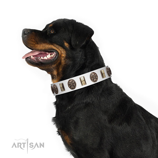 Full grain natural leather dog collar with fashionable decorations
